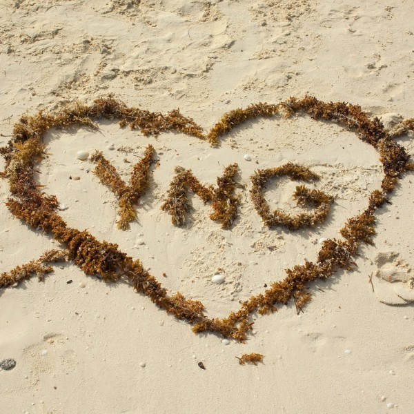 YNG SS 2010 CUBA_19